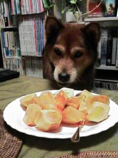 なぜか柿が好き